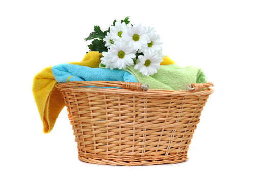 daisies on a pile of fresh towels